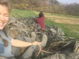 All of the plastic mulch and drip tape we removed from the sweet potato field!