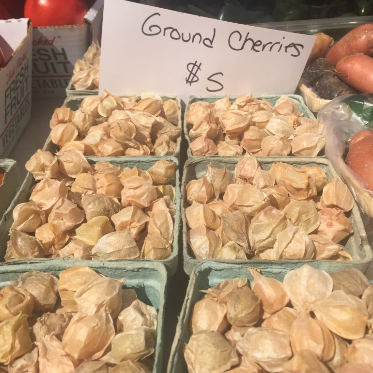 RB ground cherries