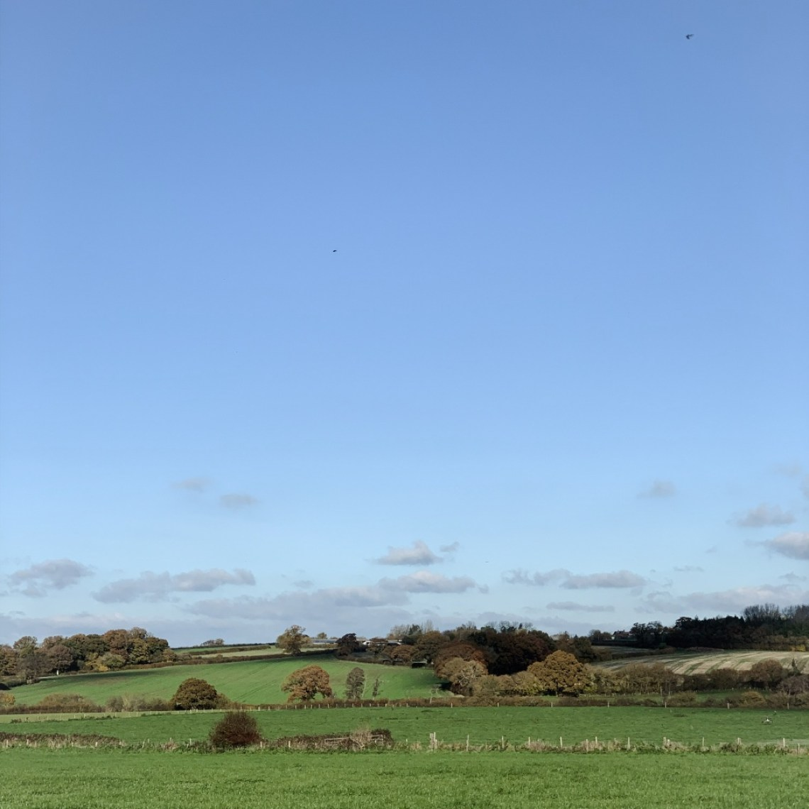 View of rolling farmland and blue sky