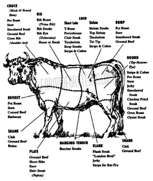 Beef Cuts Diagram | farmtoforktexas