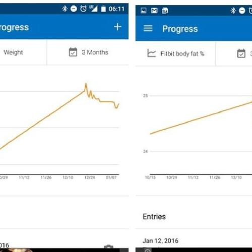 Graph of tracking body fat vs scale weight