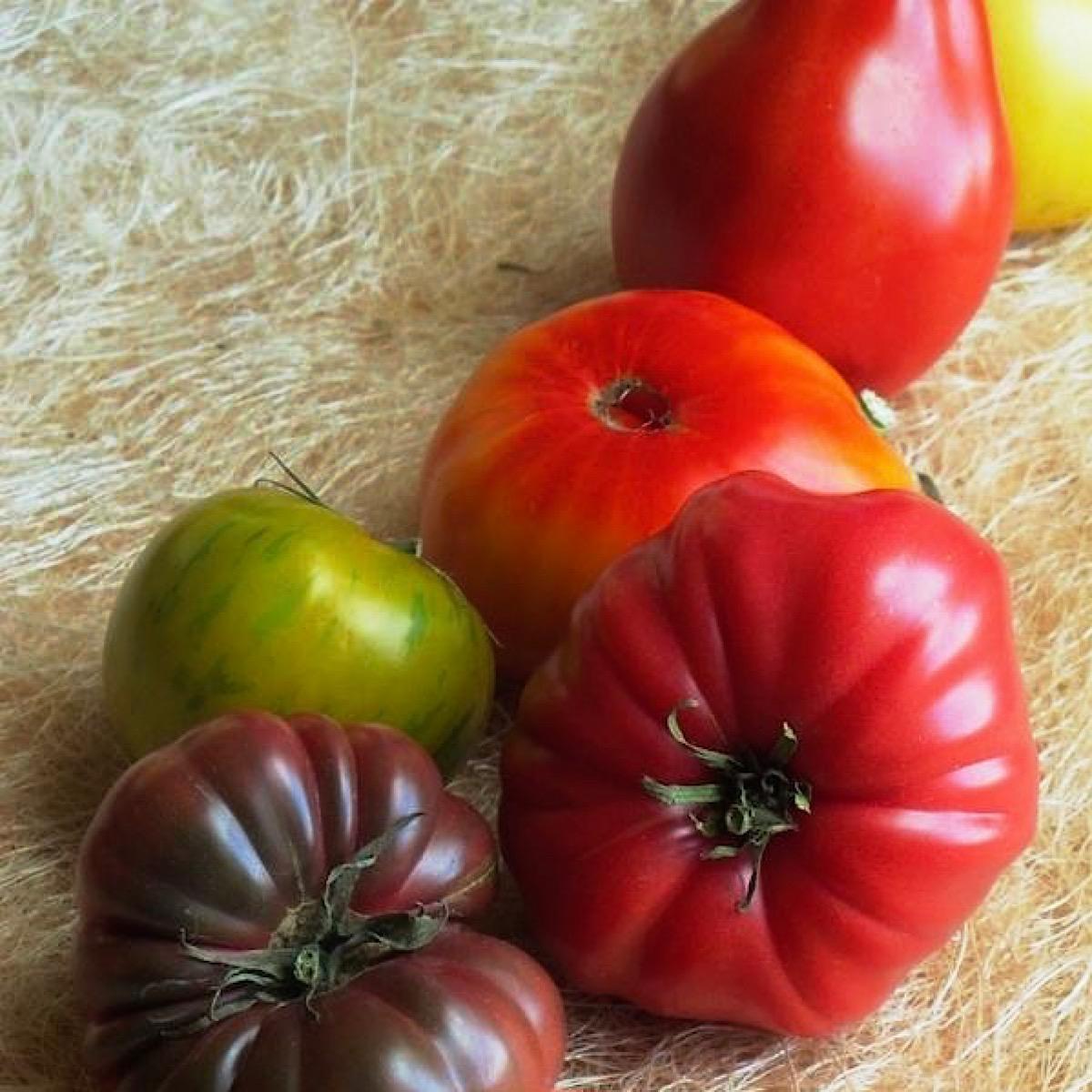 Best heirloom tomato varieties in 2020