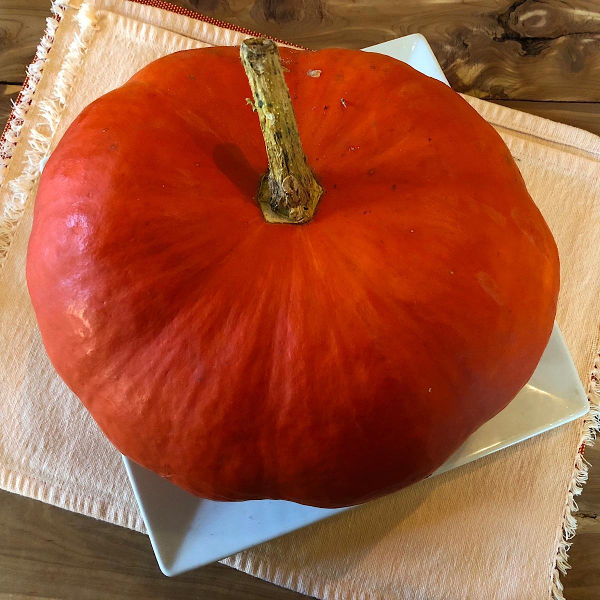 Heirloom pumpkin called Rouge d'entemps