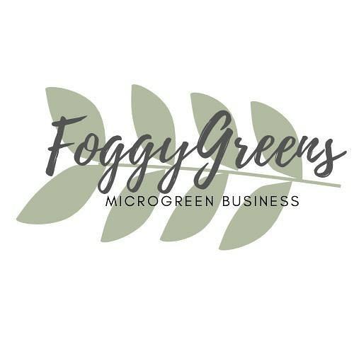 FoggyGreens