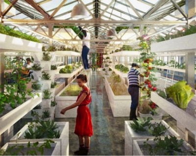 aquaponic farming in Swiss