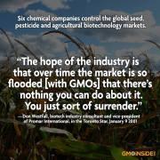 GMO Flood GMO Free Jackson County