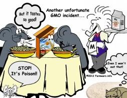GMO Incident Sm