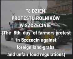 polish protest