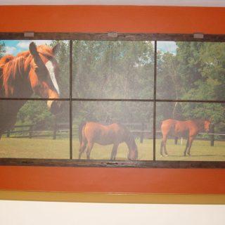 Interior Framed Digitally Printed Canvas