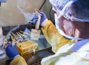 Exames para identificar pessoas infectadas pela Covid-19 - foto de Fabrício Escandiuzz