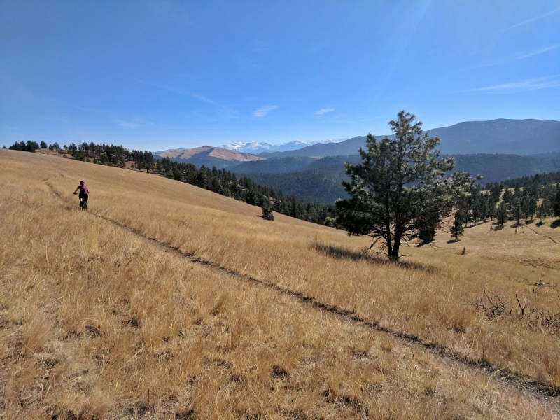 Helena Ridge MTB