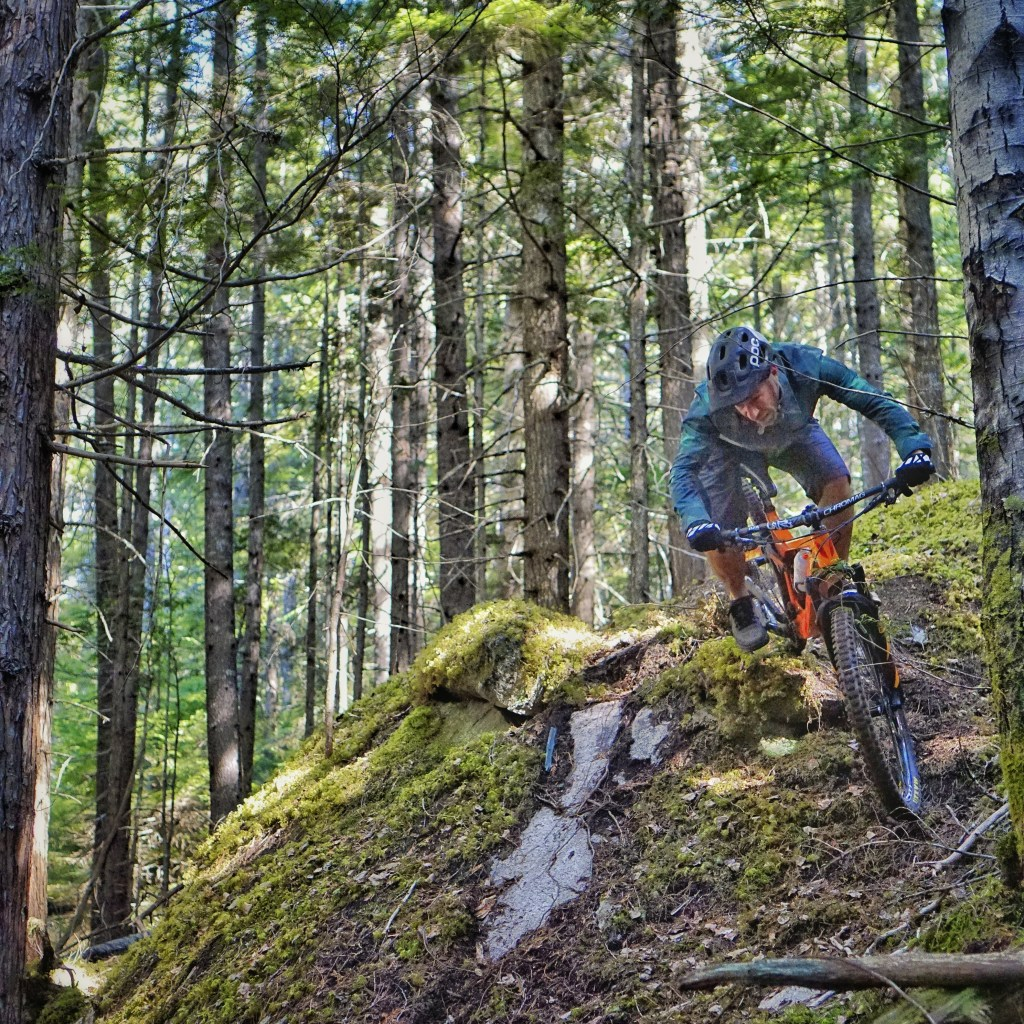 Terrace Mountain Biking Green