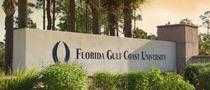 Florida Gulf Coast University Foundation, Inc.