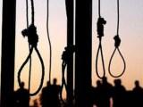 سازمان ملل افزایش شمار اعدامها در ایران را محکوم کرد