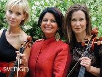 برگزاری پانزدهمین جشنواره موسیقی جهانی شیستا – استکهلم