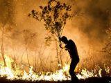 مراسم تشییع  فعالان محیط زیست مریوان که توسط سپاه کشته شدند+فیلم