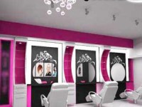 پلمپ آرایشگاههای مختلط