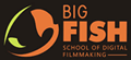 Big fish film school