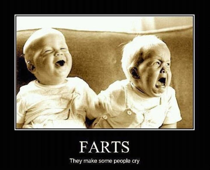 Image result for flatulence funny