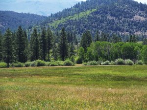 Tahoe Ranch, large acreage, water rights, alpine meadows, mountain home