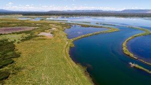 The Island Ranch attracts thousands of migratory waterfowl and is known for it's trout fishing and larger game.