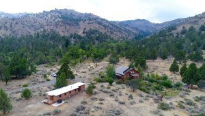 Cherry Creek Nature Retreat provides ideal conditions for a variety of wildlife.