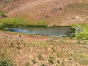 Disaster Peak Cattle Ranch has no fishing allowed on McDermit Creek.