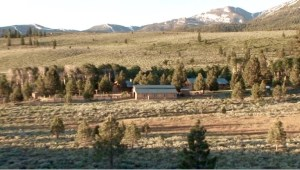 There's nothing like the Sierra's in the Summer, and Cow Camp Ranch offers the best of the Sierra's!