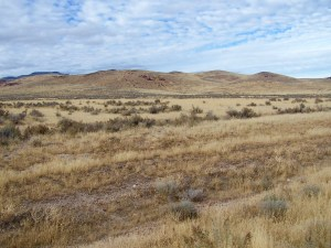 McDermitt 51 acres consists of level pasture land with city water and power located near historic Nouque Ranch.