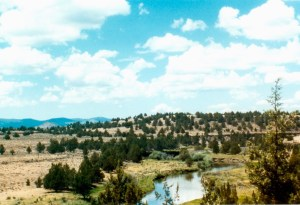 The Pit River Retreat is located near Alturas CA.