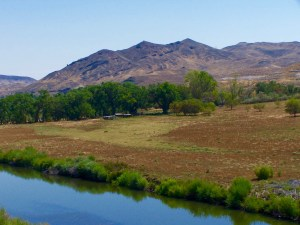 Painted Rock Ranch property is exceptionally located just off I-80 and 10 minutes from the new Tesla Plant. Reno is less than 30 minutes away.