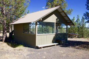 Pit River Retreat property is covered with native vegetation and piñon pines.