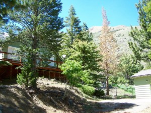 Twin Lakes Get-Away is located in the only subdivision around Twin Lakes started in 1955.
