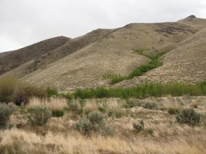 Woodward Ranch consists of 936 acres in Pass Creek Canyon.