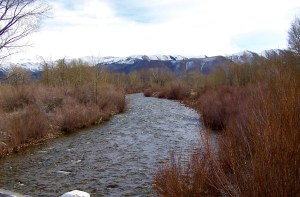 Walker River Front Land is located in Coleville, CA in the fertile Antelope Valley.