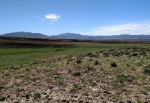Three Northern Nevada Livestock Ranches
