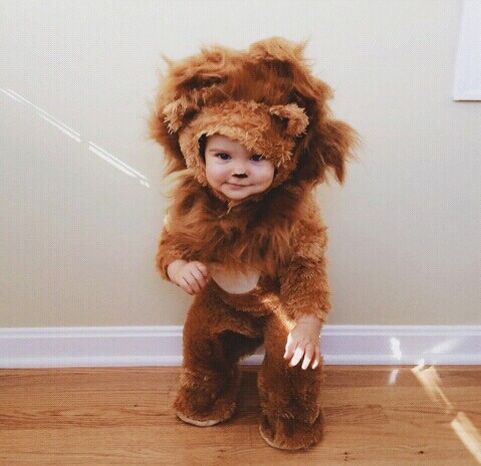 Cute baby animal costumes (21)