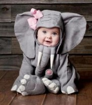 Cute baby animal costumes (5)