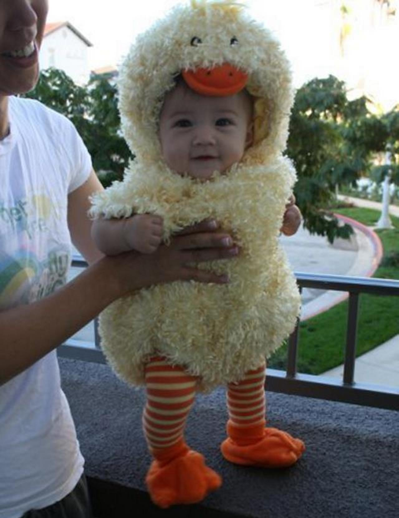 Cute baby animal costumes (61)