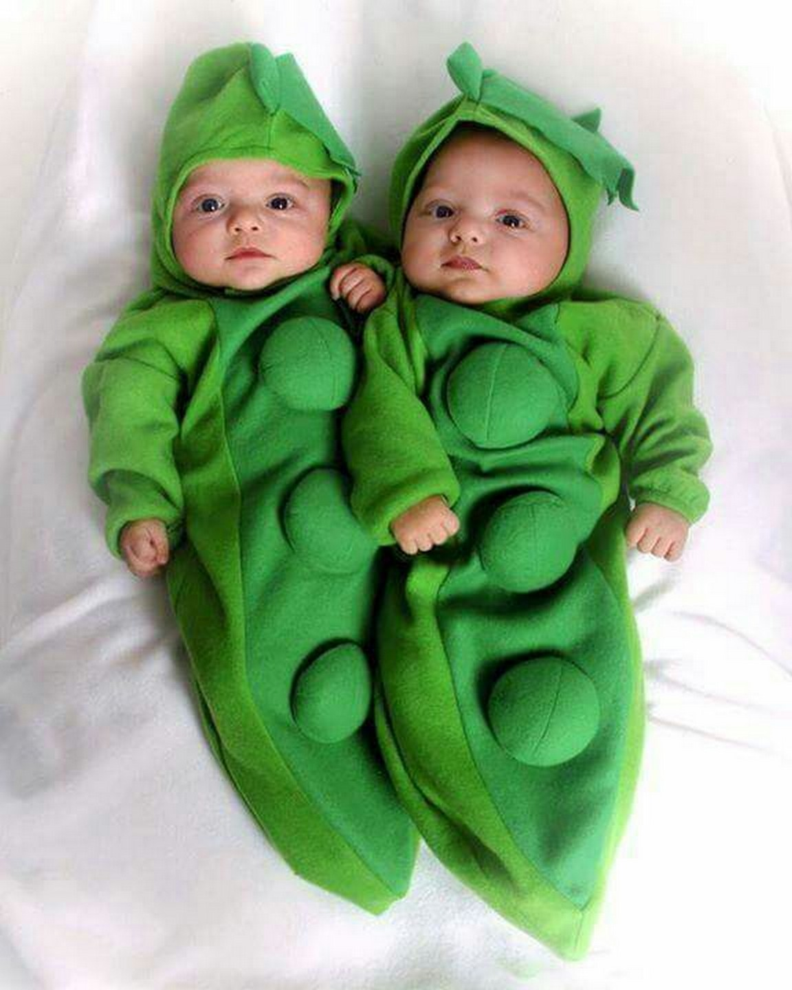 Cute baby animal costumes (65)