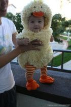 Cute baby animal costumes (80)