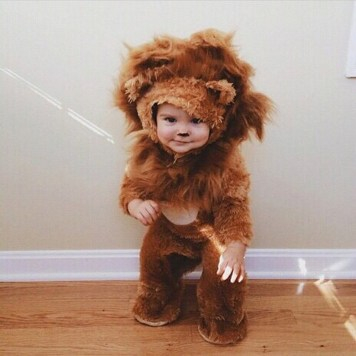 Cute baby animal costumes (95)