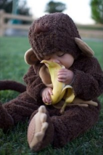 Cute baby animal costumes (97)