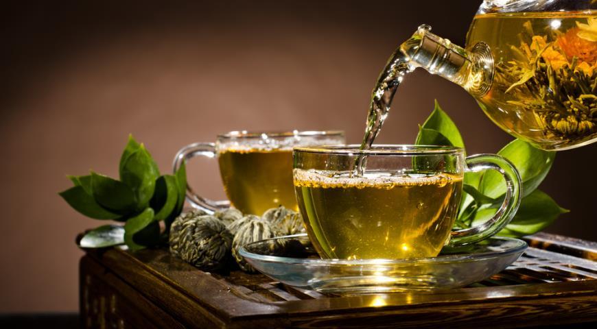 Зеленый чай: полезные свойства и вред целебного напитка