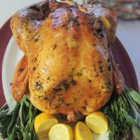 Herb Roasted Turkey & Gravy