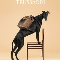 New TRUSSARDI Home Collection announced