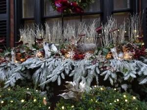 A festive window box display