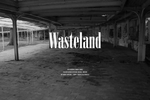 wasteland_fy_2