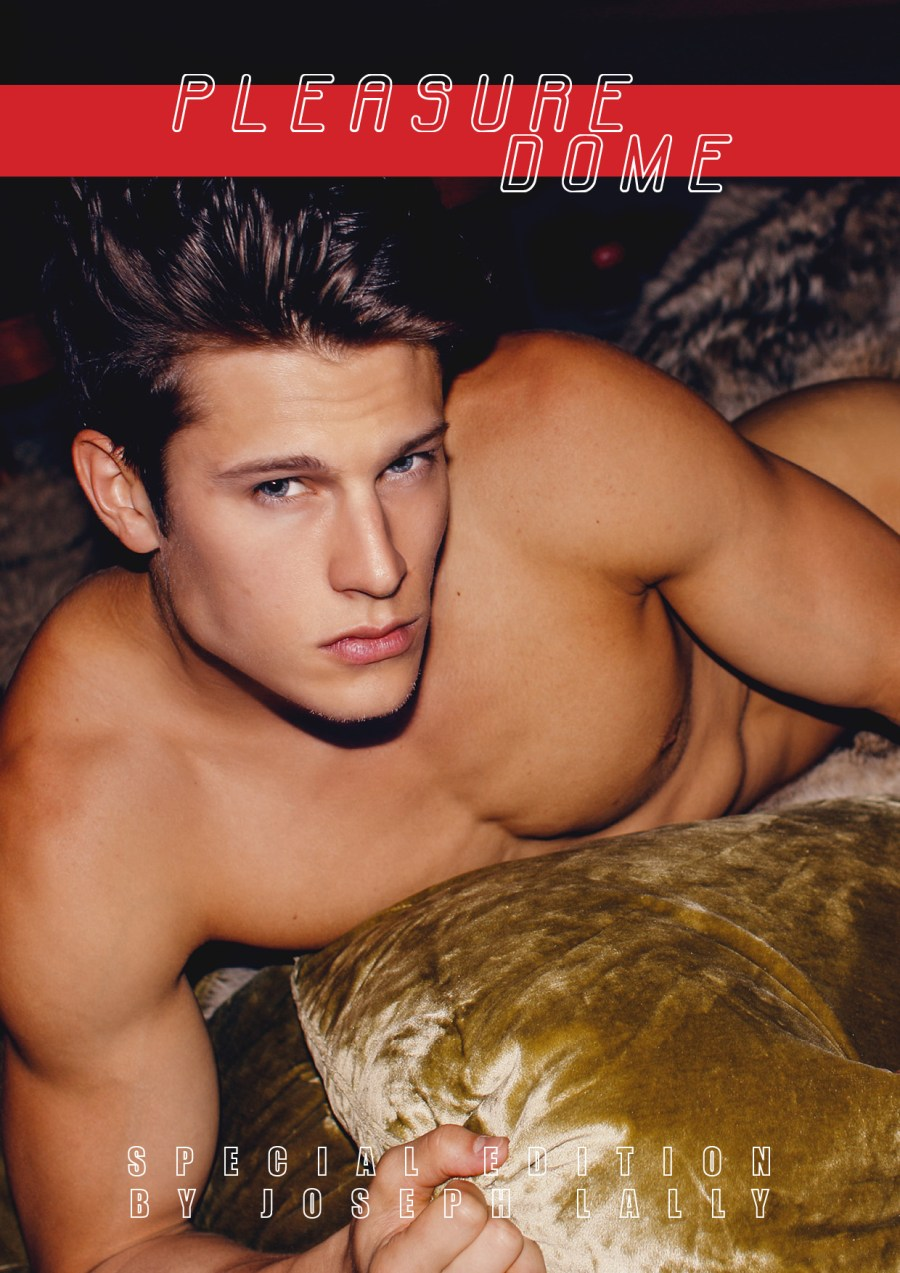 1-pleasure-dome-yearbook-fanzine-exclusive-by-joseph-lally-front