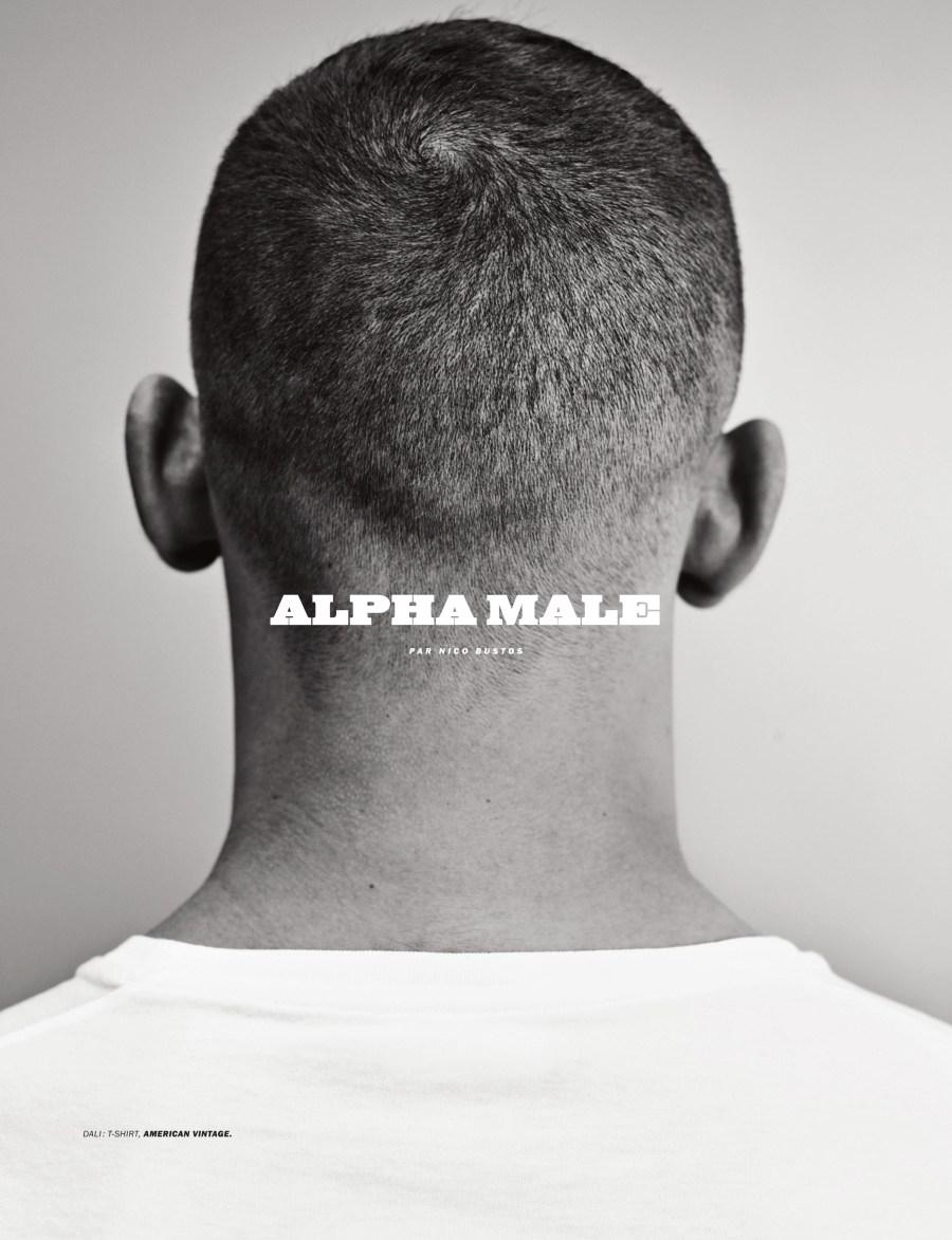 LUI - Alpha Male by Nico Bustos1